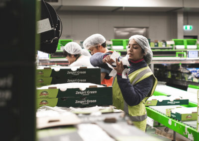 kiwifruit packing